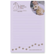 Promotional Products - BIC Adhesive Notepad 25 Sheets