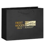 Promotional Custom Logo Gloss Laminated Euro Tote Bag 13x10