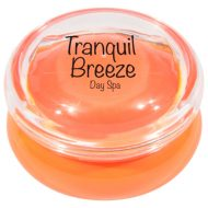 Promotional Custom Lip Moisturizer in Container