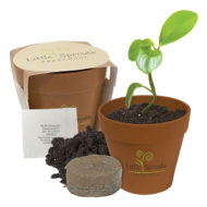Customizable Flower Growing Pot Promotional Products