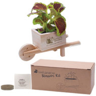 Promotional Products Custom Logo Imprinted Flower Grow Kit
