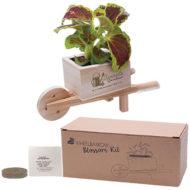 Promotional Products Custom Logo Imprinted Flower Grow Kit
